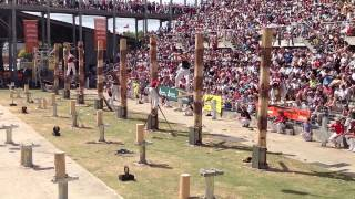World Tree Felling Championship Final thumbnail