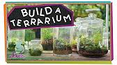 How To Set Up Terrarium Kit For Kids Keelan S Corner Ok4kidstv