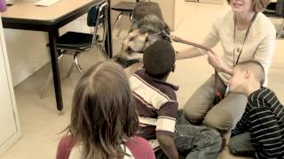 The Good Dog Foundation: Dogs Helping Humans Heal