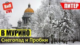 Смотреть видео Пробки в Питере | Кудрово и Мурино это гетто? авария, Питер не готов к снегу, критика онлайн