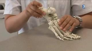 Le corps humain 4/4 - Le pied, à ne pas négliger !