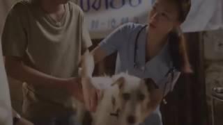 Стих до слёз про китайскова собака