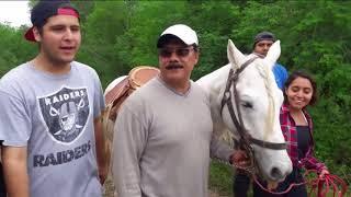 Musical Bienestar Animal Del Caballo (fula Shede)