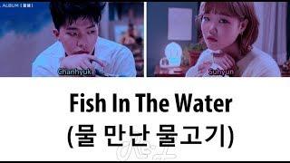 AKMU 악동뮤지션 - 'Fish in the water 물 만난 물고기' LYRICS (Color Coded ENG/ROM/HAN)