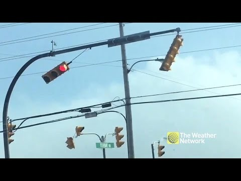 Traffic lights fight to hang on against strong Newfoundland winds
