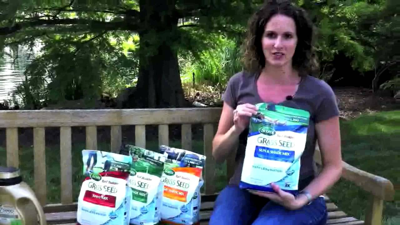 How To Choose The Right Gr Seed For Your Lawn