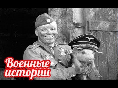 Рассказы ветеранов великой отечественной войны - военные истории  1941-1945 годов