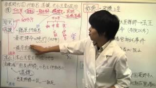 【日本史】奈良⑤仲麻呂、道鏡、光仁天皇の政治