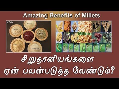 சிறுதானியங்களை ஏன் பயன்படுத்த வேண்டும்?   Amazing benefits of Millets