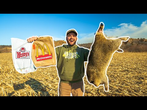 fast-food-restaurant-raccoon-trapping-challenge!!!-(surprising-result)