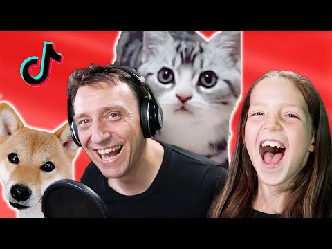 Reaction to Funny Cats and Dogs Tik Tok Videos