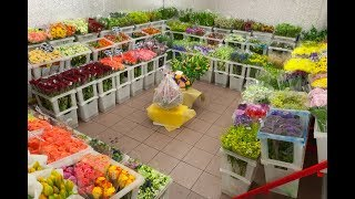 База цветов в Грозном(г.Грозный ул.Ханкальская 23 Быстрая доставка букетов - 89280225553 сайт для онлайн заказа https://www.flower.grozn.ru., 2016-02-13T14:12:20.000Z)