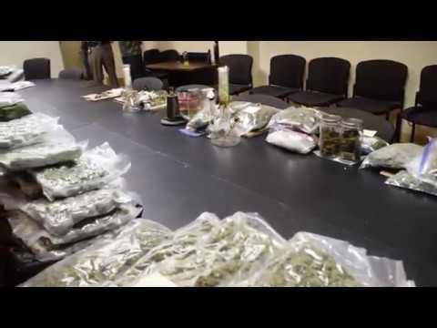 New Hanover County Sheriff's Vice unit marijuana bust 1