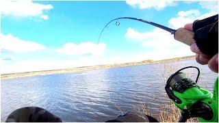 Ловля ЩУКИ на СПИННИНГ весной ОТКРЫЛИ СЕЗОН СПИННИНГОВОЙ ЛОВЛИ 2021 Щука весной Рыбалка 2021