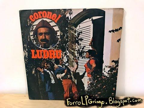 discografia forro tropicalia