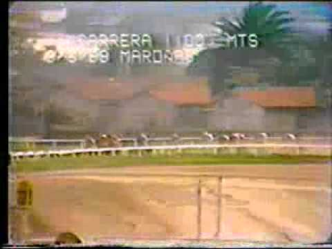 Download 1a Carrera 1100mts. 03/06/1989 EL LOCO Hipodromo de Maroñas Stud General Rivera