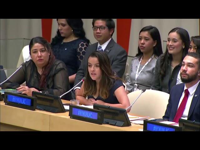 Consejo de Seguridad (CS) en la Reunión Plenaria de NYMUNLAC 2019.