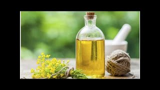 Những điều cần biết về dầu hạt cải GMO  ECO-HEALTH.VN