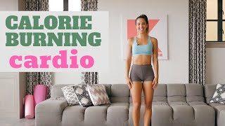 Cardio Workout NO EQUIPMENT Needed | In Home Holiday Series