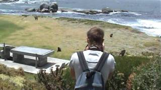 Cape town, Cape of good hope, small