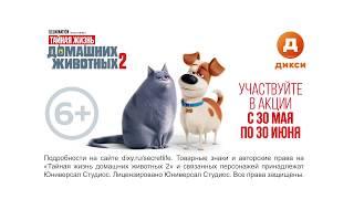 Любимые герои мультфильма в «ДИКСИ»!
