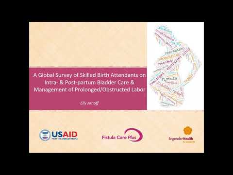 A Global Survey of Skilled Birth Attendants
