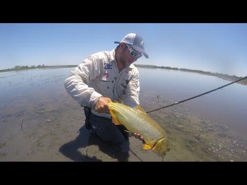 Pesca en el Río Dulce - Santiago del Estero (Argentina)