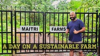 VLOG 16 | Maharashtra | Maitri Farms, Chandore | A Day on a Sustainable Farm