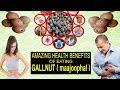 माजूफल के फायदे और नुकसान  Gallnut Powder Uses  Benefits Of Gallnut ( MAAJUFAL ) Oak Gall Manjakani.