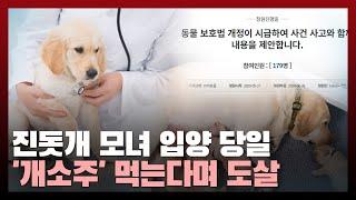 """""""진돗개 모녀 입양 당일 개소주 해먹는다며 도살""""...…"""