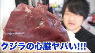 予想を超えた!!クジラの心臓をレバ刺しにして食べた結果・・・