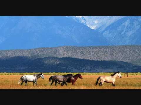 Chris LeDoux - Old Paint