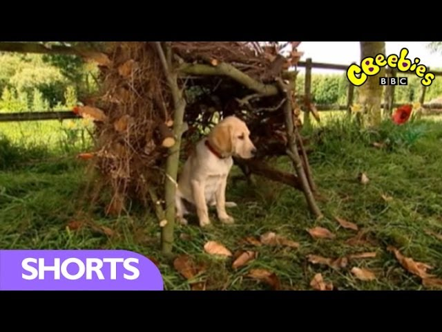 CBeebies: Big Barn Farm - In homes like The Three Little Pigs