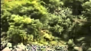 Hadhrat Mirza Tahir Ahmad Khalifatul Massih 4 Friday Sermon Part 1.mpg