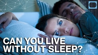 Can You Stay Awake Forever?