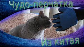 Перчатка для кота(собаки) из китая + смотрим реакцию кота.