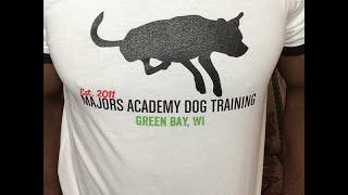 Dog Behavior Q&A #118