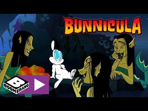 Bunnicula | Helping The Pirates | Boomerang UK 🇬🇧