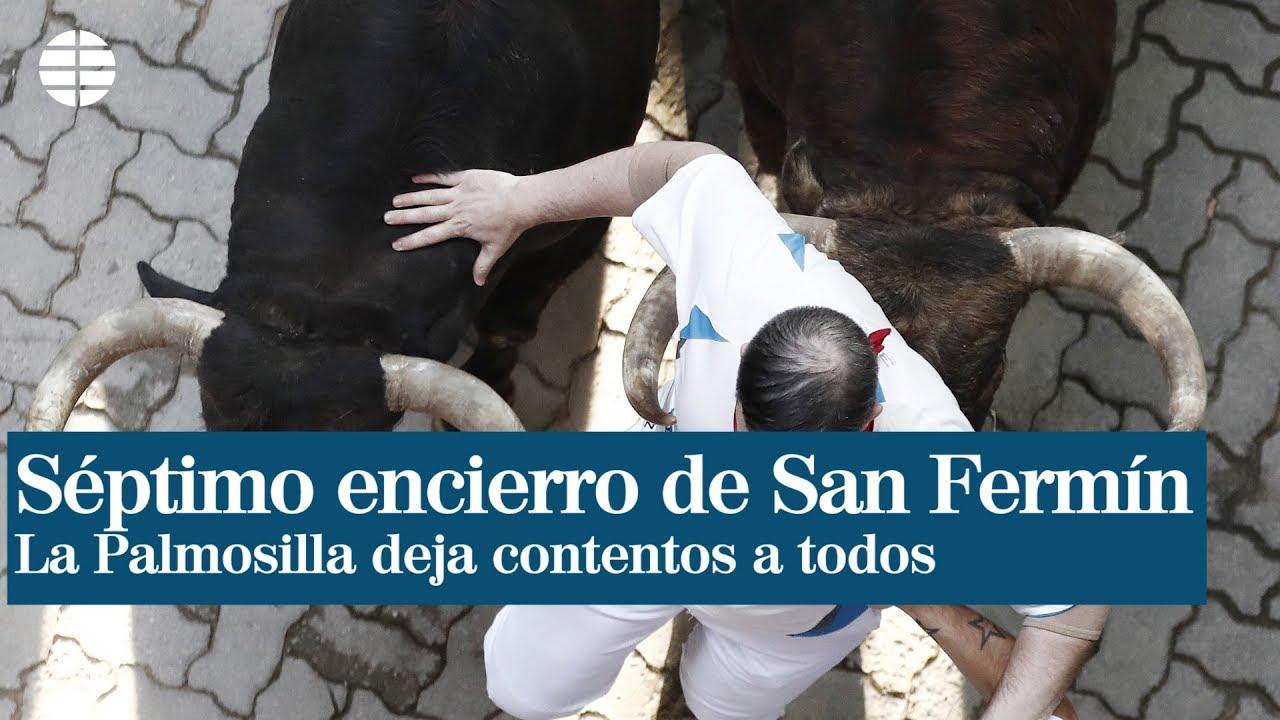 Séptimo Encierro De San Fermín La Palmosilla Deja Contentos A Todos El Mundo