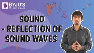Download Sound - Reflection of Sound Waves   Learn with BYJU'S