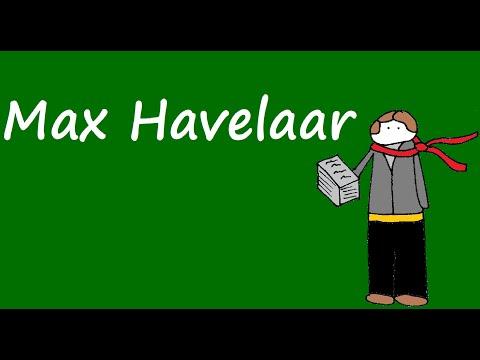 Samenvatting Max Havelaar (De Alphaman)