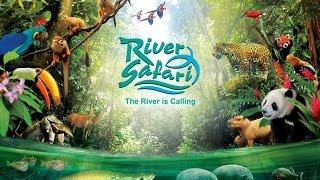 River Safari Tour & Boat Ride, Singapore Zoo - HD