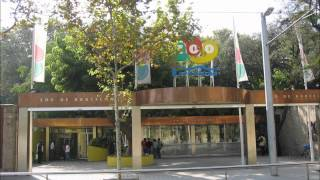 オンラインスペイン語会話ウノドストレス:Zoo de Barcelona(バルセロナの動物園)