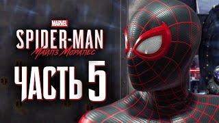 Spider-Man: Miles Morales ➤ Прохождение [4K] — Часть 5: ЧЕЛОВЕК-ПАУК ШПИОН-НЕВЕДИМКА