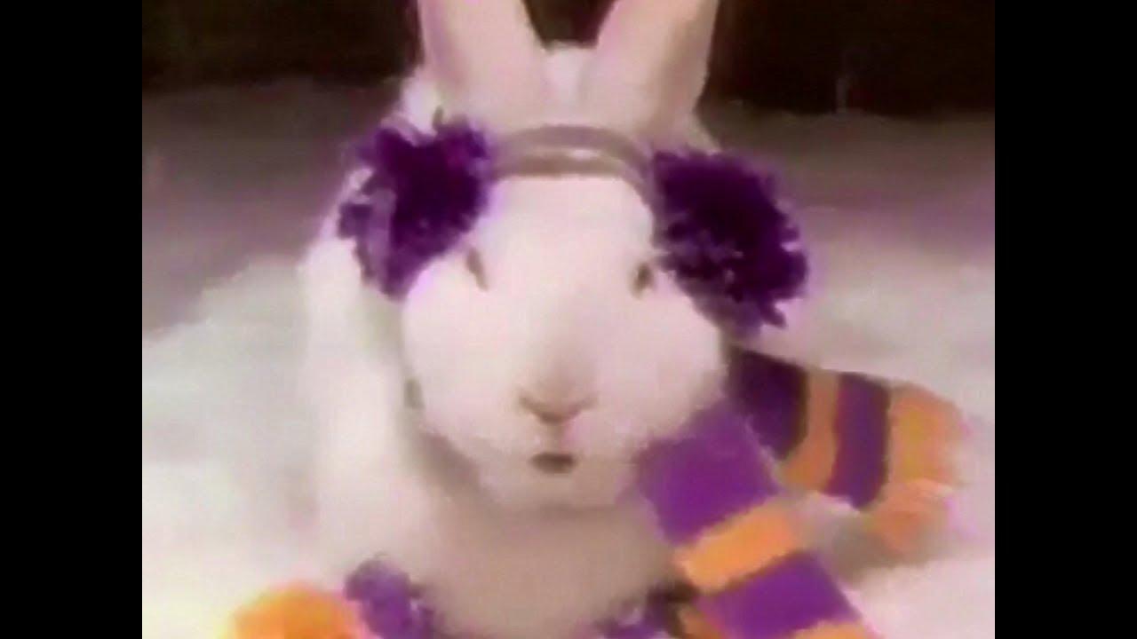 Cadbury easter eggs the cadbury easter bunny 1980s tv commercial hd cadbury easter eggs the cadbury easter bunny 1980s tv commercial hd thecheapjerseys Choice Image