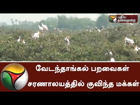 Huge amount of people visited Vedanthangal Bird Sanctuary