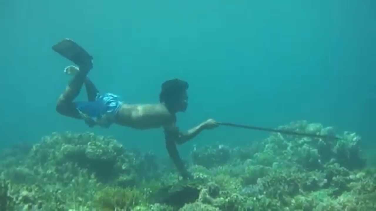 Fischen Videos