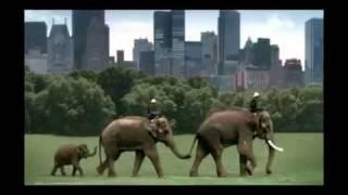 Amazing Thailand - Thailand Tourism thumbnail