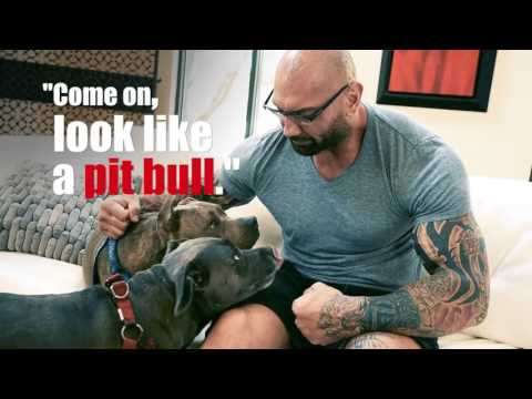 Dave Bautista opens up in interview about his love for pitbulls