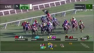 Vidéo de la course PMU PRIX WESSEX